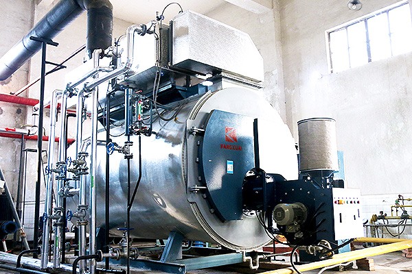 Ruihua Group 2 tons integrated condensing gas fired steam boiler